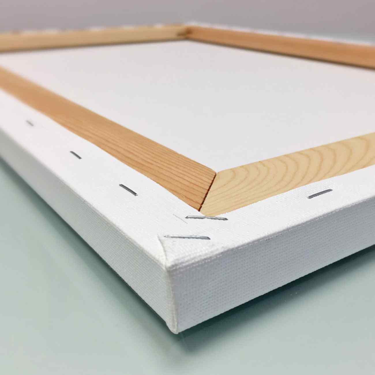 Foto na platne biely ram zadna strana